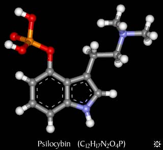 characteristics and effects of dmt n n dimethyltryptamine a psychedelic drug Find out the effects of dmt, signs of dmt addiction,  n, n-dimethyltryptamine, or dmt, is a drug best known for its ability to.